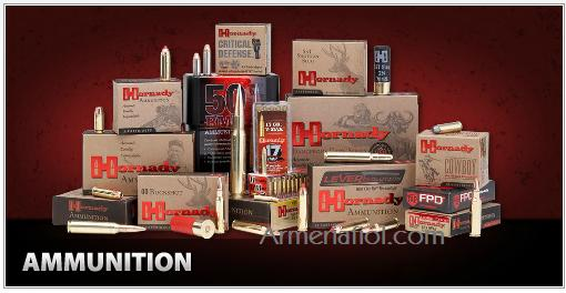 45-70 Government 250 GR MONOFLEX™ LEVERevolution®