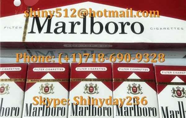 Newport Cigarettes Wholesale Cheap Zhongnanhai womens